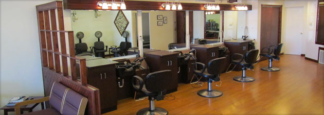 Styling Studio Edwardsburg Michigan